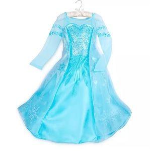 Disney Frozen, Elsa Costume